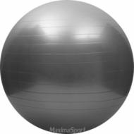 Gym Ball Fitness Pilates Aerobics Yoga Ball 60 cm.