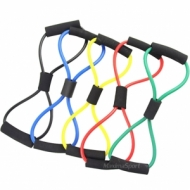 Coarda elastica - figura 8