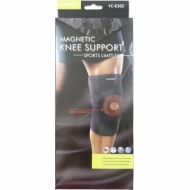Magnetic knee guard